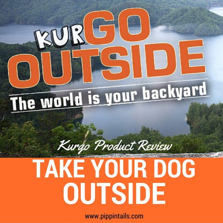 Kurgo Review