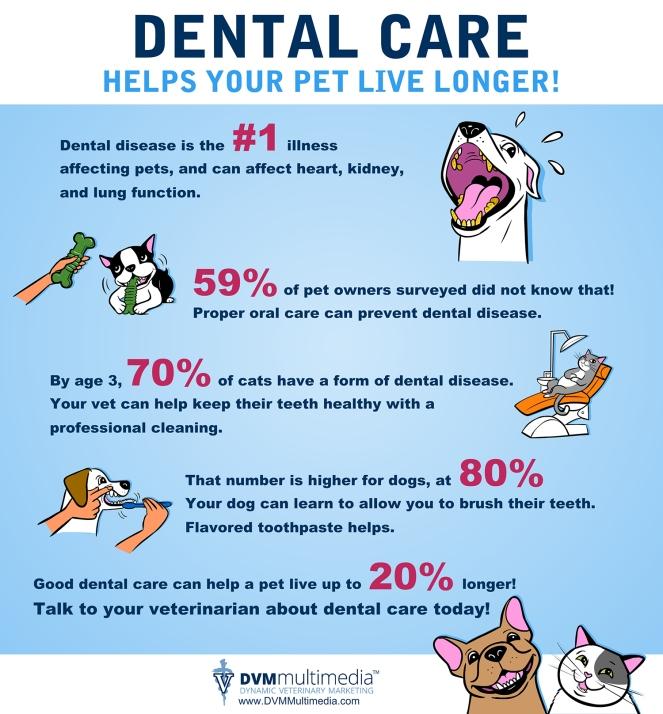 Dental- copy.jpg